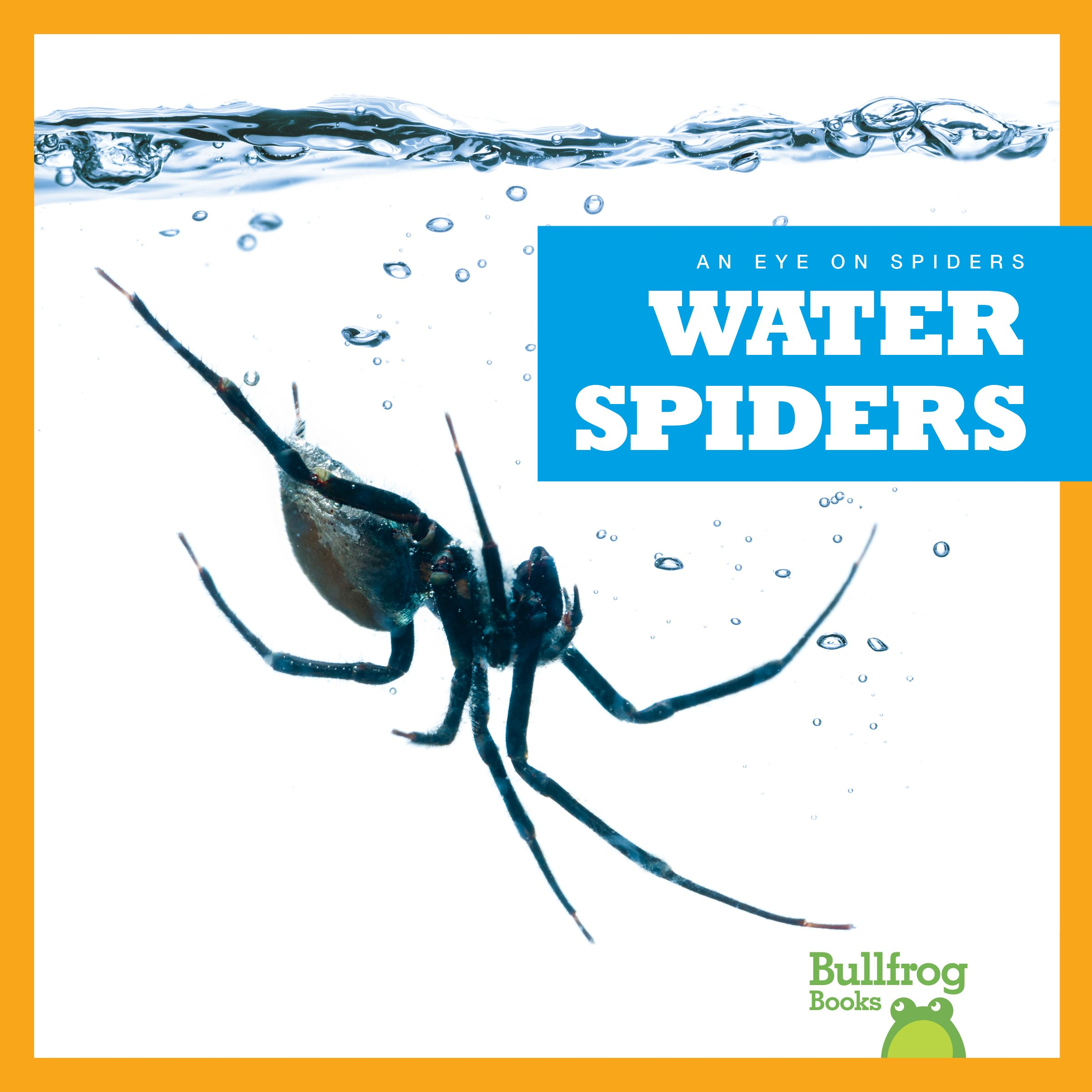 Water Spiders (Bullfrog Books: An Eye on Spiders)