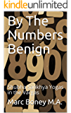 By The Numbers Benign: Shubha Sankhya Yogas in the Vargas (English Edition)