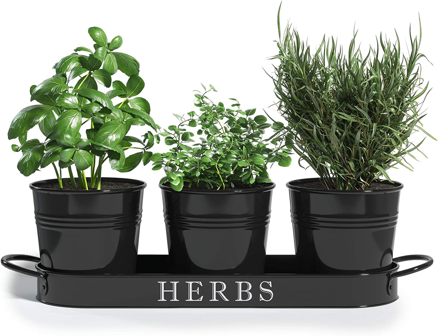 Herb Pot Planter Set with Tray