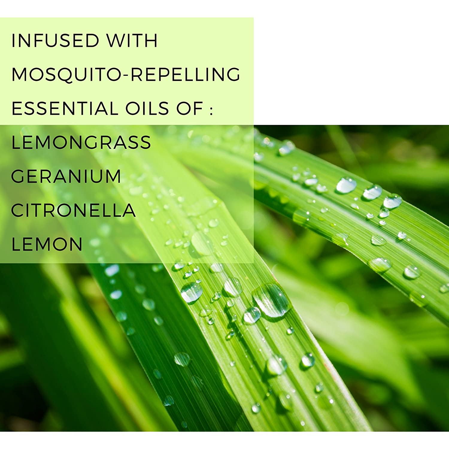 Mosquito Naturals Natural Lemongrass Citronella Beauty Barn Kid Body Oil Repellent Candle Set Of 3 Indoor Outdoor 88 Hour Burn Naturally Repels Insects