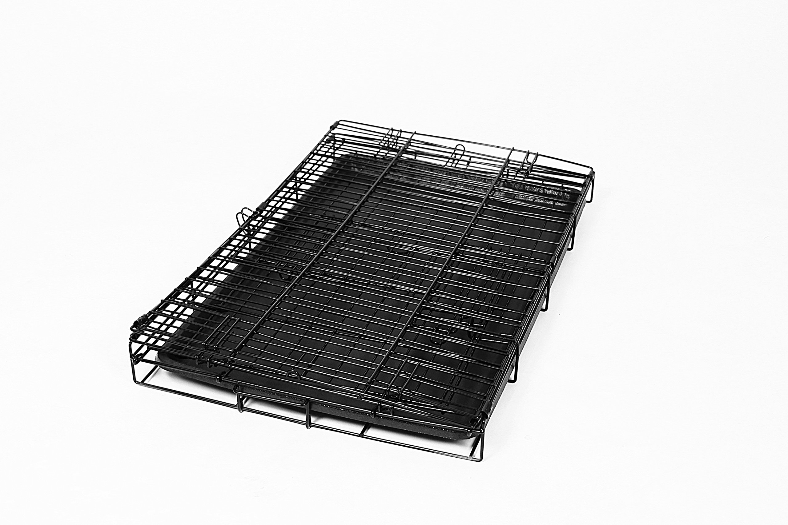 Carlson Pet Products Secure and Foldable Single Door Metal Dog Crate, Medium by Carlson Pet Products (Image #4)