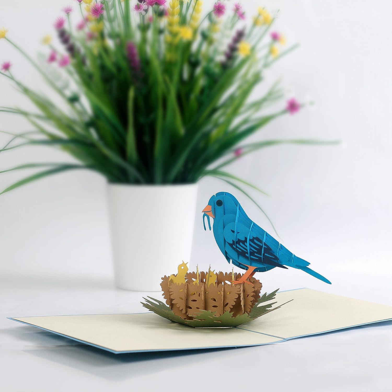 Amazon Cutpopup Bluebird 3d Pop Up Greeting Card Intricate