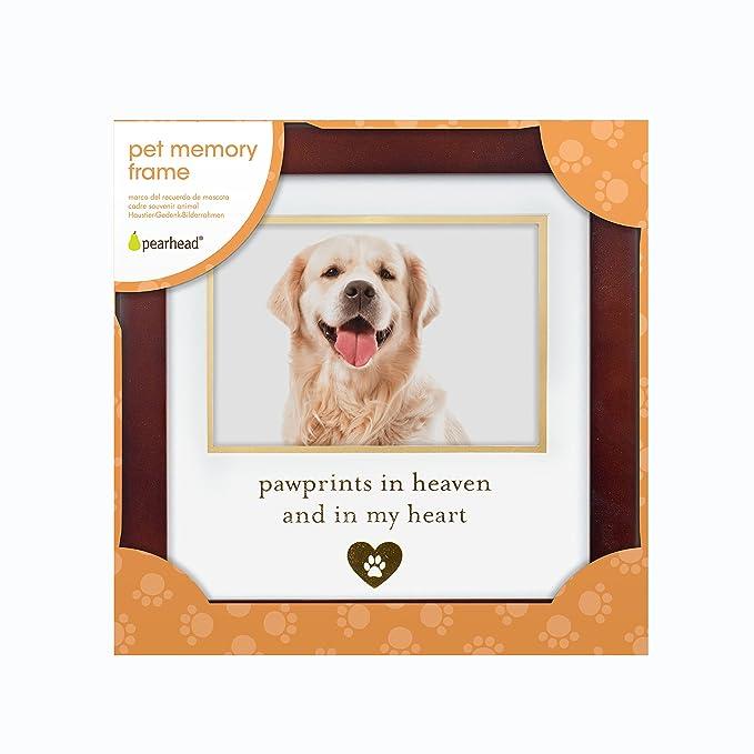 Amazon.com : Pearhead You left pawprints on my heart, Pet Gift ...
