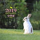 2019年大判カレンダー ウサギ