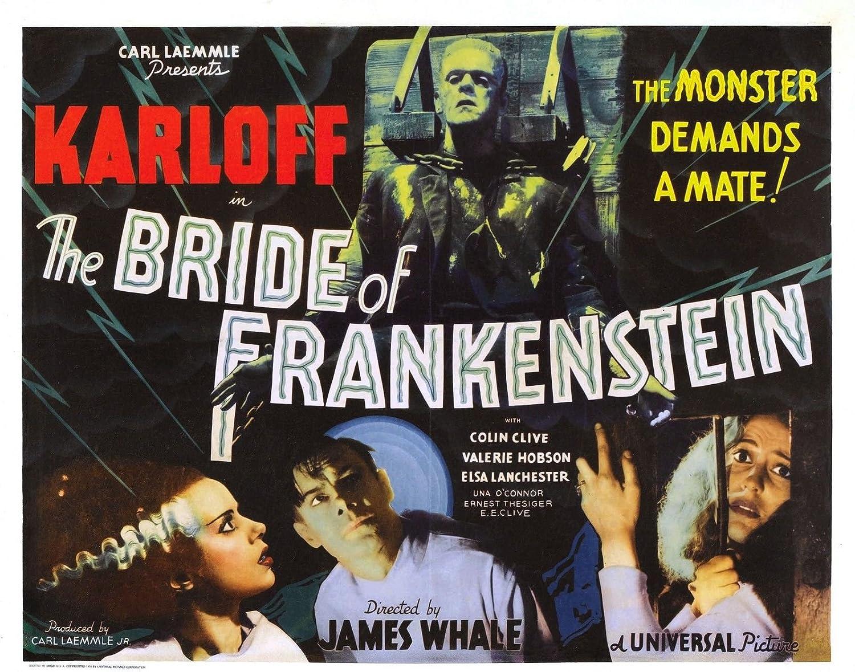 bride of FRANKENSTEIN campy classic MOVIE POSTER boris KARLOFF 24X36 bold