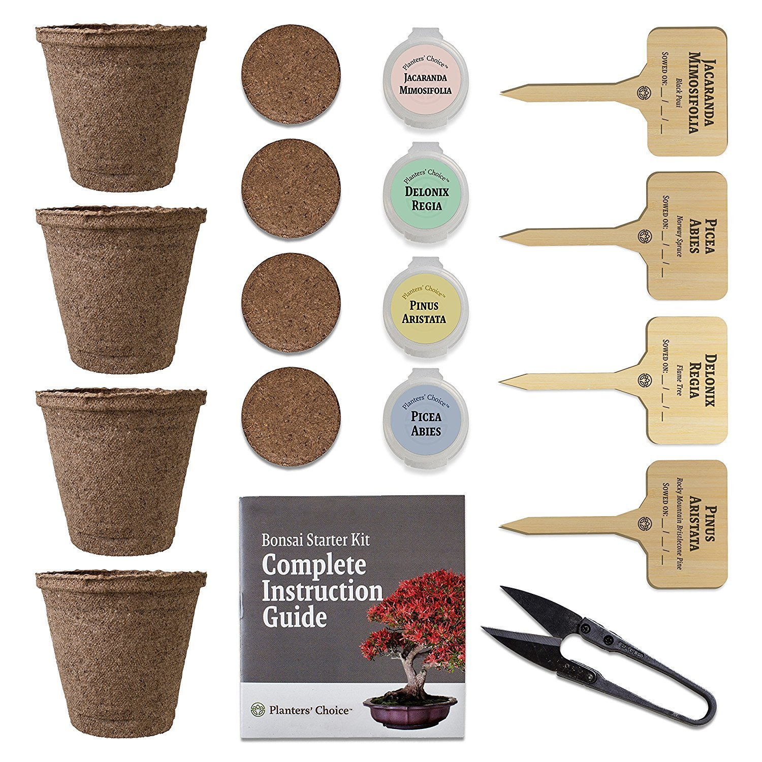 Planters' Choice Bonsai Starter Kit + Tool Kit - the Complete Kit to Easily Grow 4 Bonsai Trees from Seed with Comprehensive Guide & Bamboo Plant Markers - Unique Gift Idea by Planters' Choice (Image #3)