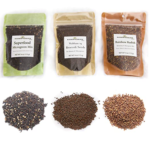 Amazon.com: Heirloom Sprouting & Microgreen Seed Variety ...