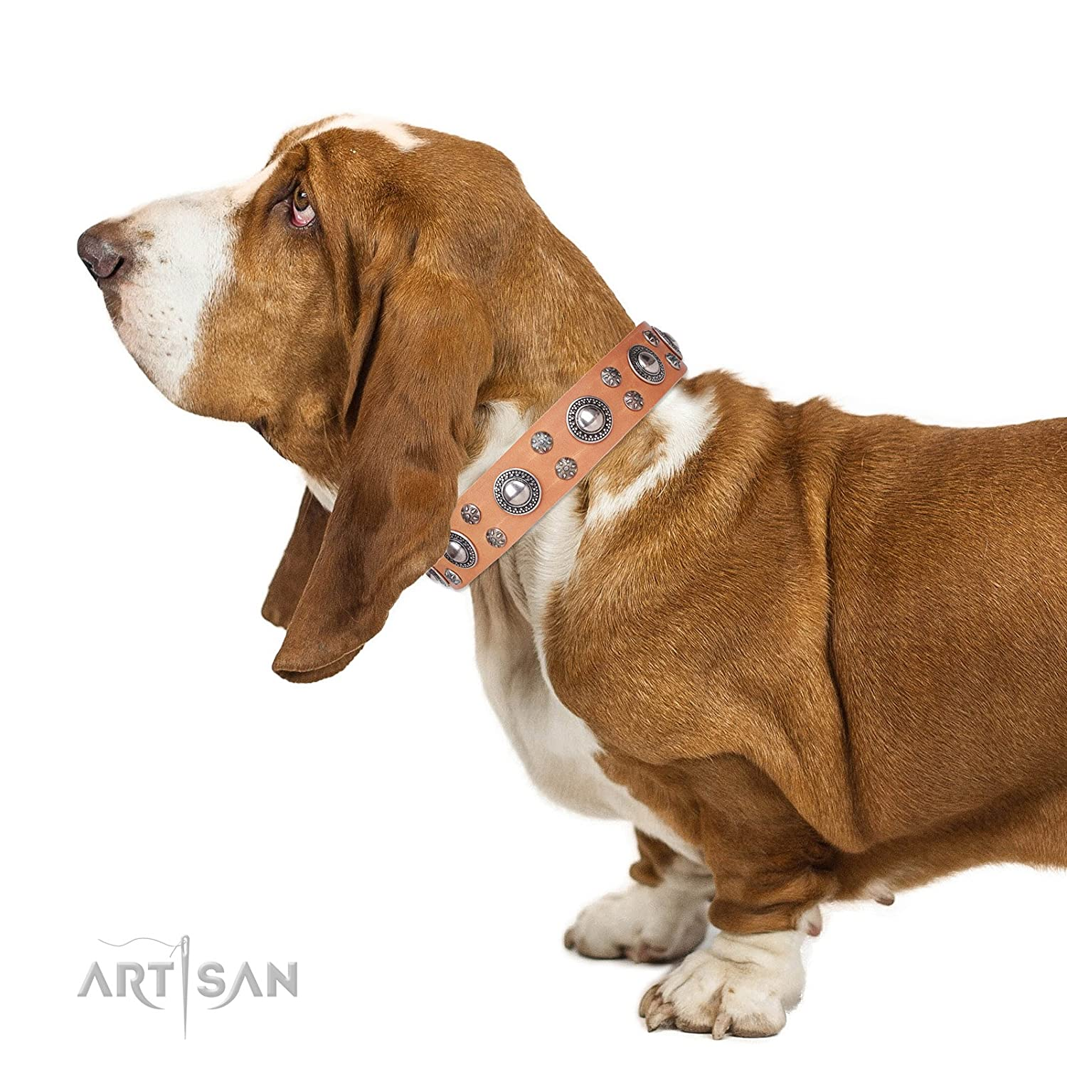 Fits for 35 inch (88cm) dog's neck size FDT Artisan 35 inch Tan Leather Dog Collar with Chrome Plated Decorations Floral Fashion