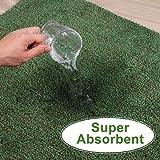 """Indoor Super Absorbs Mud Doormat 36""""x24"""" Latex"""