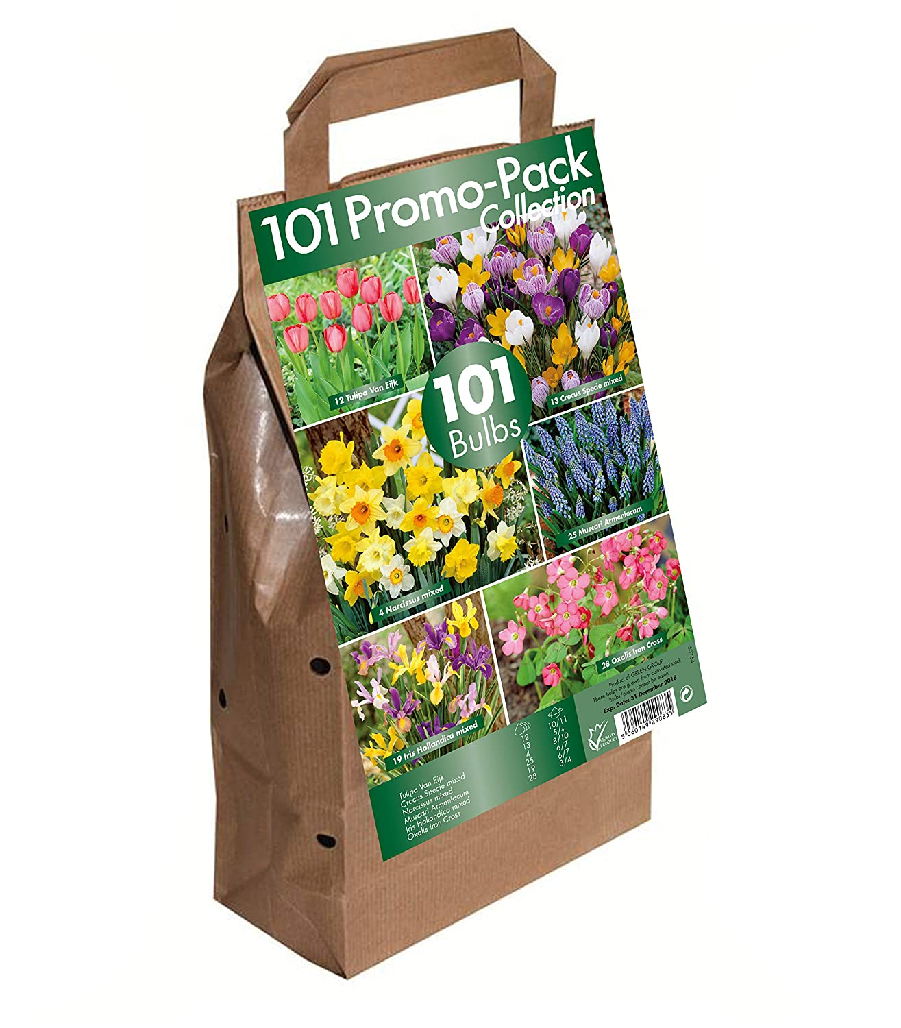 101 Flower Bulb Collection Big Buy Value Pack 6 Spring Flowering