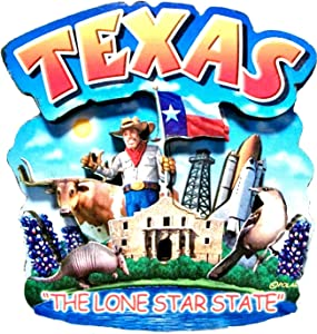 Texas State Montage Wood Fridge Magnet 2