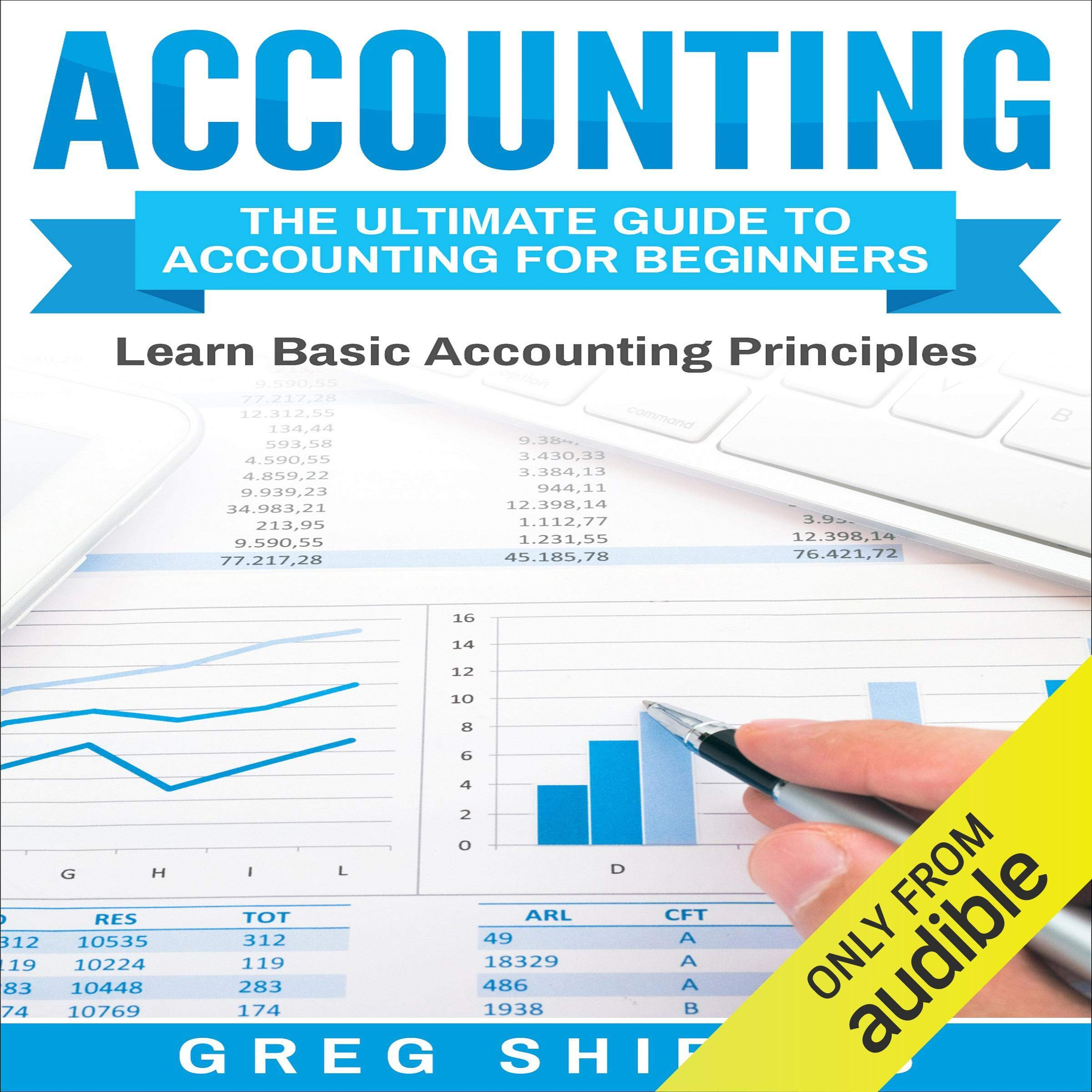 Accounting  The Ultimate Guide To Accounting For Beginners  Learn The Basic Accounting Principles