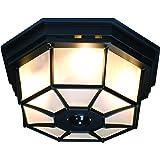 Heath Zenith HZ-4300-BK-B 360-Degree Motion-Activated Octagonal Ceiling Light, Black