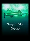 Pursuit of The Grander