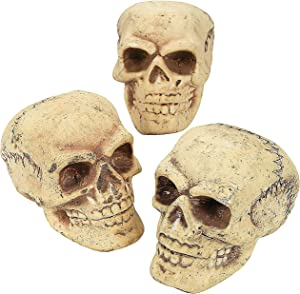 Fun Express - Skulls (3pc) for Halloween - Home Decor - Figurines - Molded - Halloween - 3 Pieces
