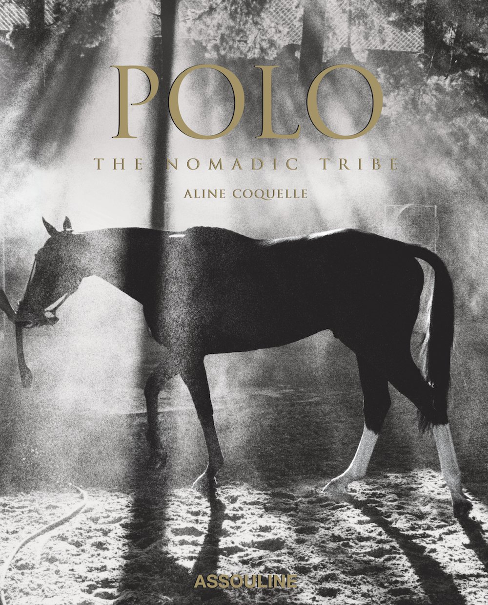 Polo: The Nomadic Tribe (Trade)