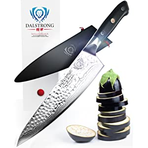 dalstrong chef's knife - shogun series x gyuto - vg10 - hammered finish review