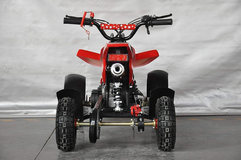 Mini quad infantil Raptor/Mini quad para niños de 3 a 8 años/Motor 49cc 2 tiempos (ROJO): Amazon.es: Coche y moto