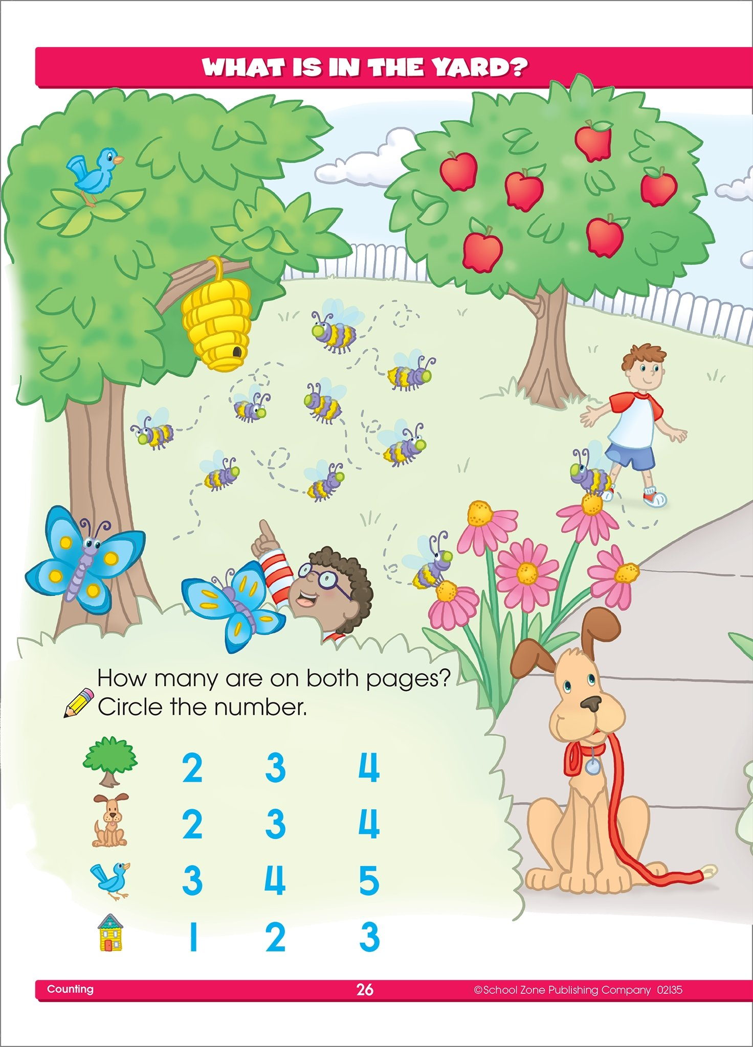 Preschool Basics Workbook Ages 3-5: Joan Hoffman, School Zone Staff ...