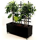 Blumentrog Pflanztrog Raumteiler Polyrattan mit Rankgitter Rechteck LxBxH 130x46x165cm schwarz