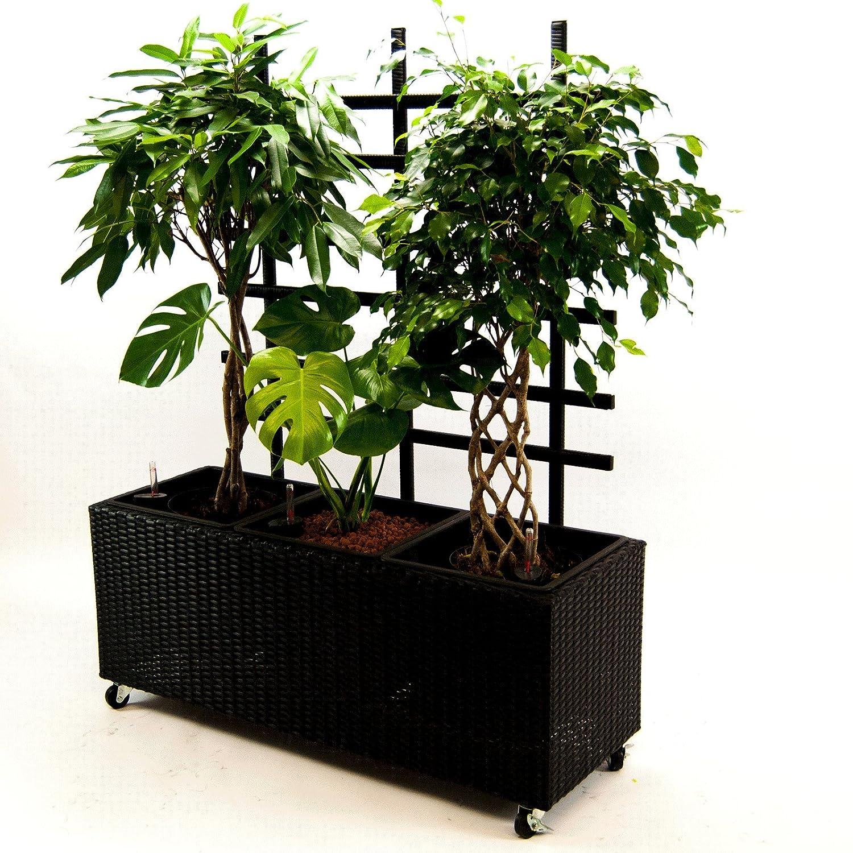 Blumentrog Pflanztrog Raumteiler Polyrattan mit Rankgitter Rechteck LxBxH 106x38x130cm schwarz