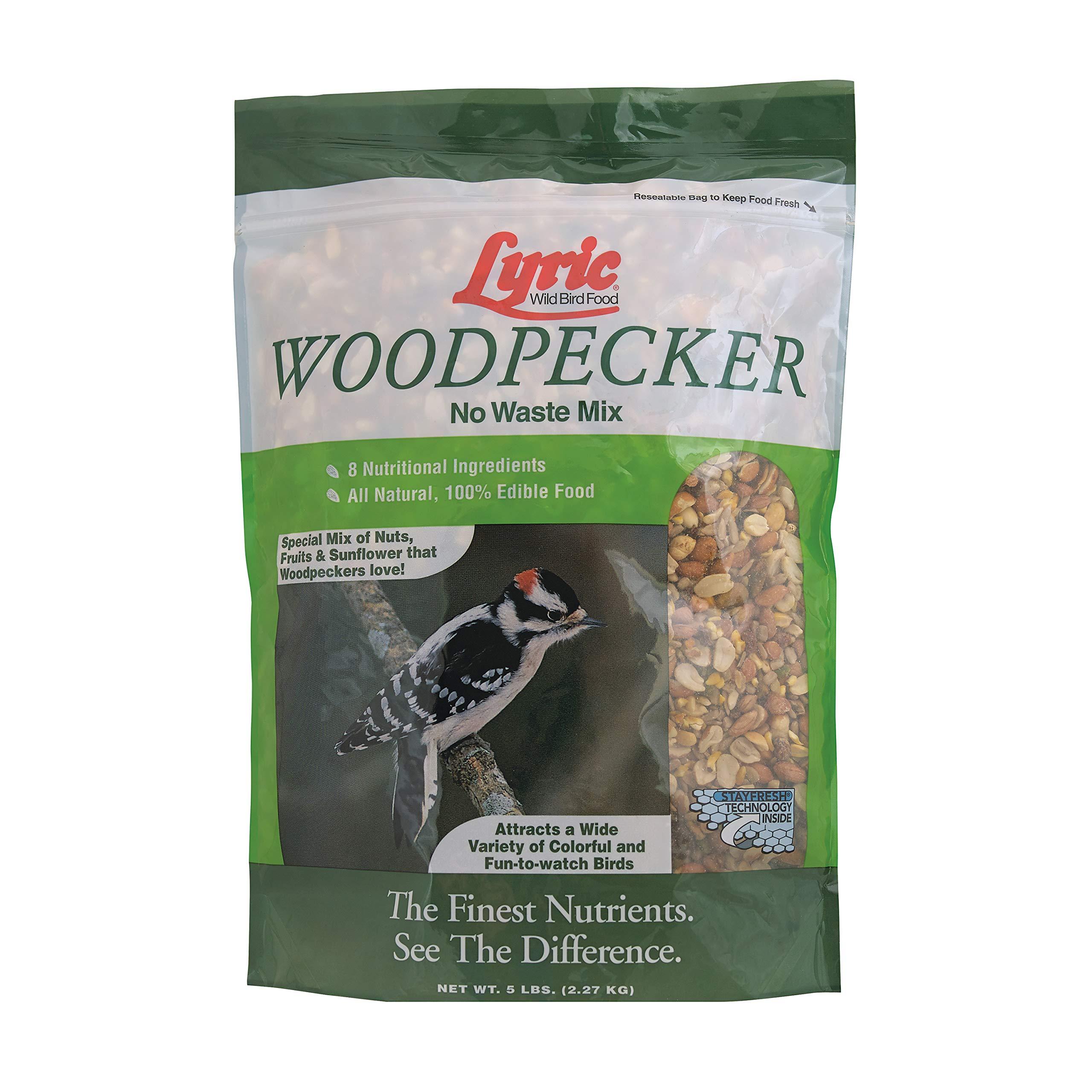 Lyric 2647471 Woodpecker No Waste Mix - 5 lb. by Lyric