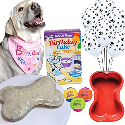 Marvelous Amazon Com Dog Birthday Cake Kit Puppy Cake Wheat Free Peanut Personalised Birthday Cards Veneteletsinfo