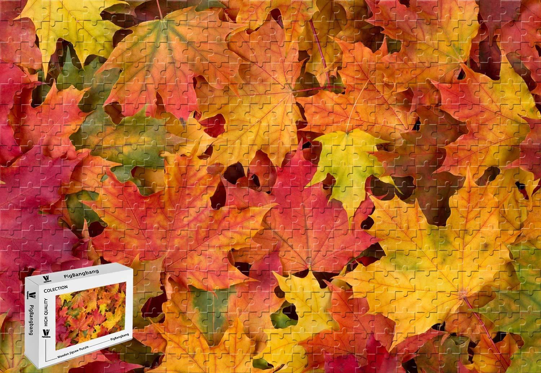 【70%OFF】 PigBangbang、20.6 X 15.1インチ、ジグソーグル付き難しいパズル プレミアム木製 - 黄 - 秋のカエデの葉 赤 赤 黄 緑 - 500ピース ジグソーパズル B07GPGHTLH, ブランド京の蔵小牧【最安挑戦!】:84381cc8 --- a0267596.xsph.ru