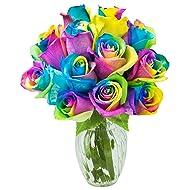 KaBloom Fresh Cut Rainbow Rose Bouquet of 12 Rainbow-Swirl Roses (Farm-Fresh, Long-Stem) with Vase