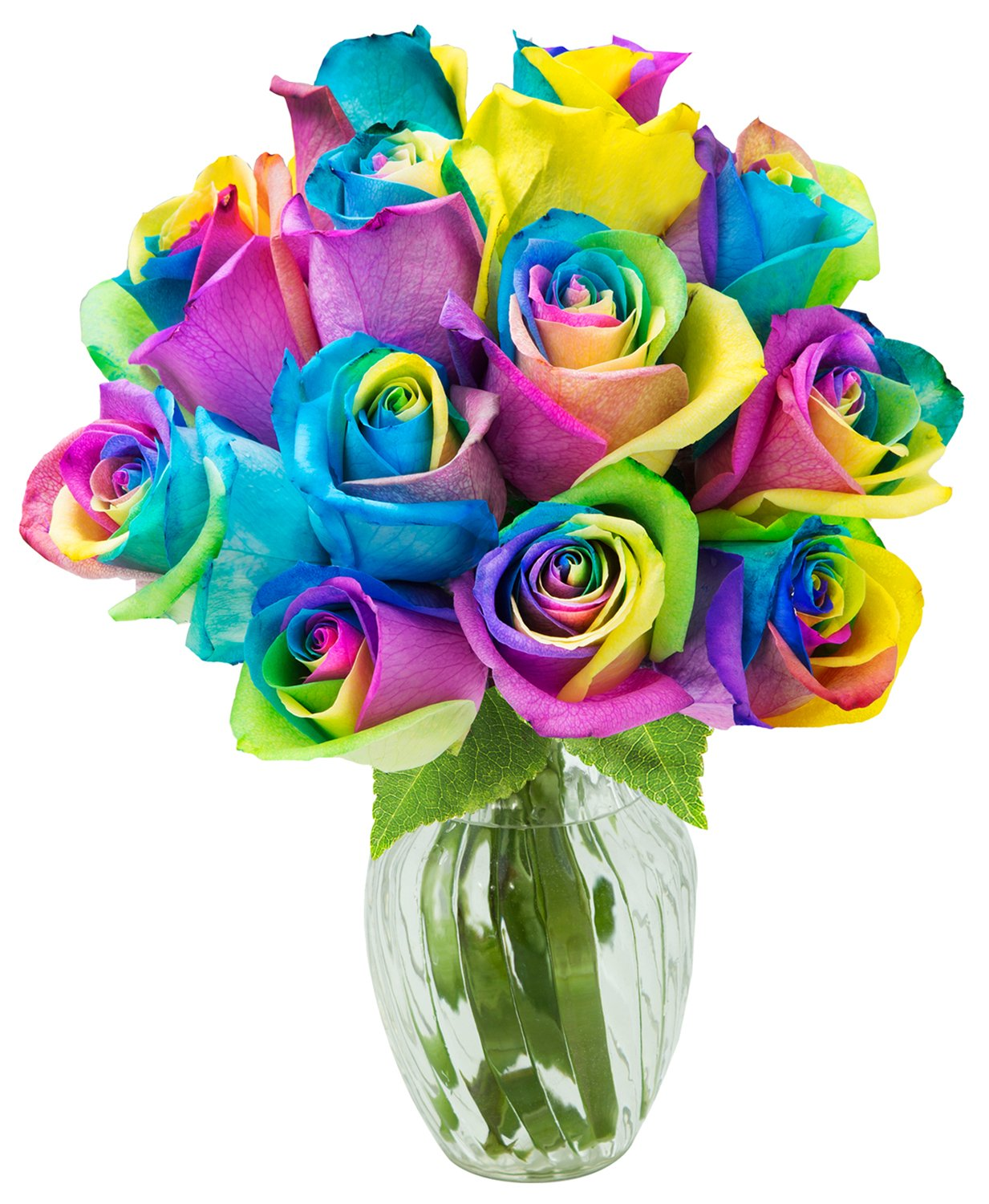 KaBloom Bouquet of 12 Fresh Rainbow Roses (Farm-Fresh, Long-Stem) with Vase