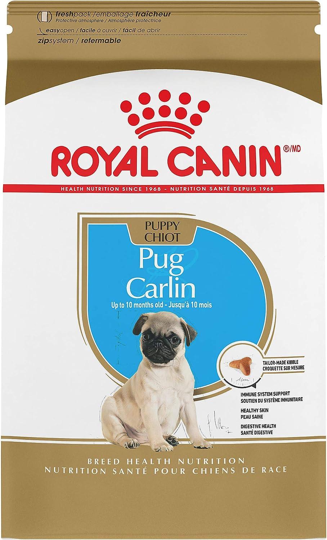 royal canin para pug puppy