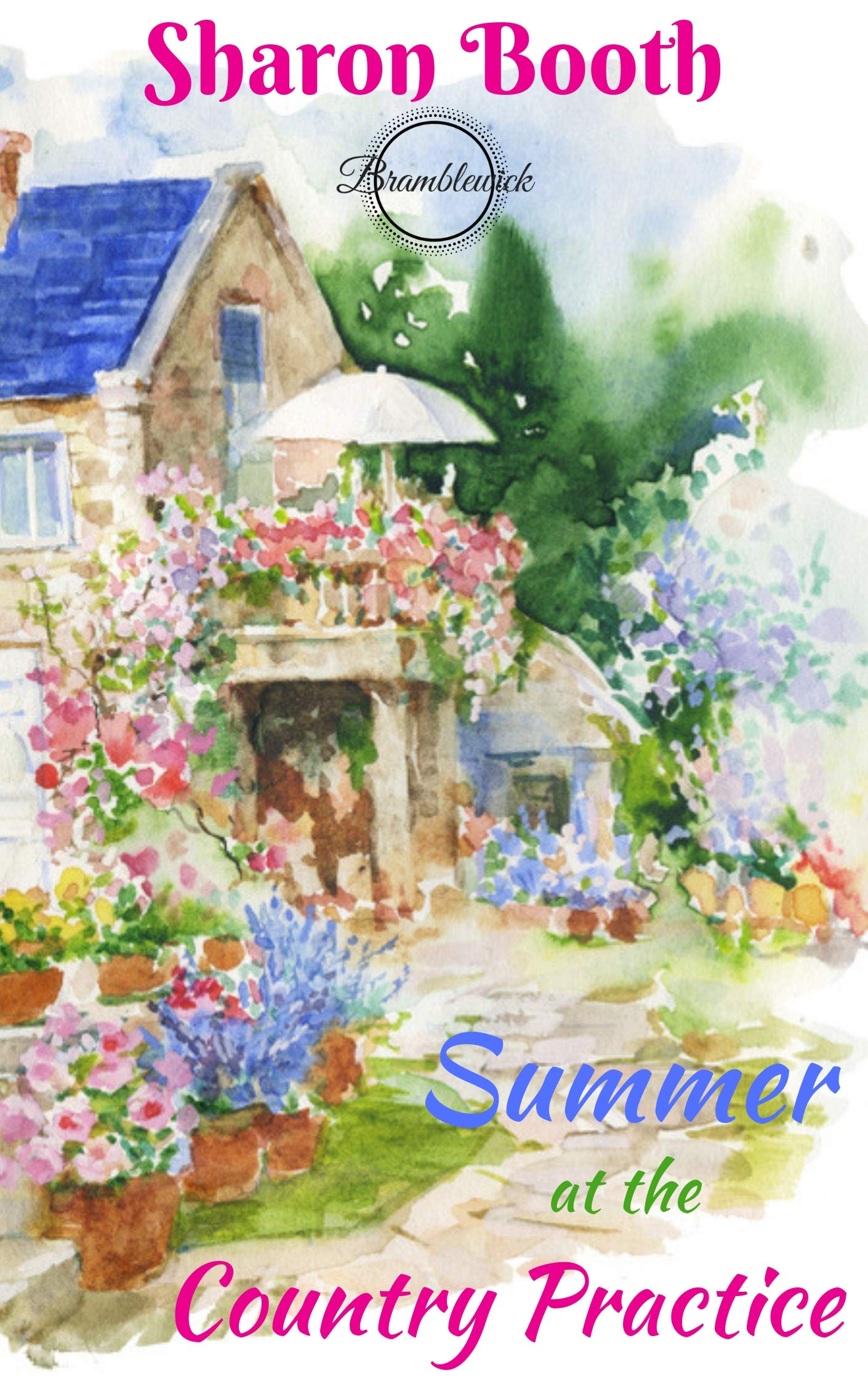 Summer At The Country Practice  Bramblewick Book 5   English Edition