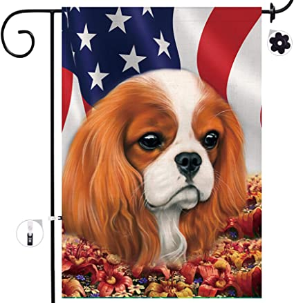 Amazon Com Bonsai Tree Cavalier King Charles Spaniel Dog Seasonal Burlap Garden Flag Banner Decorative Outdoor Double Sided Yard Flag 12 X 18 Prime Garden Outdoor