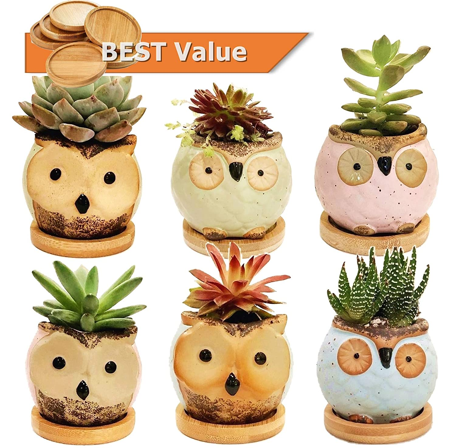 Chez JuJu Ceramic Owl Succulent Pots Cute Animal Flower Planters 2.8 with Drainage 6 Pack Bamboo Saucer Gift for Friend Family Birthday Wedding Holiday Kid Home Office Desktop Indoor Decor