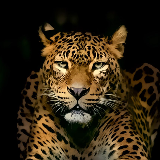 Amazon Com Hd Wild Animal Wallpapers Appstore For Android