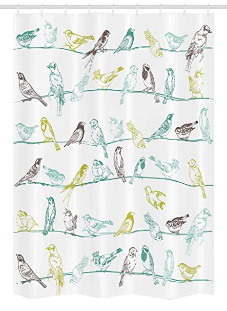 Ambesonne Birds Stall Shower Curtain Various Type Of Sitting And Chirping On Wires Musical