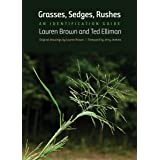 Grasses, Sedges, Rushes: An Identification Guide