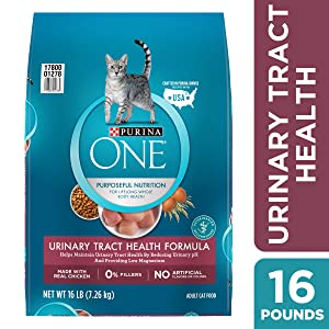 Purina ONE Urinary Tract Health Dry Cat Food