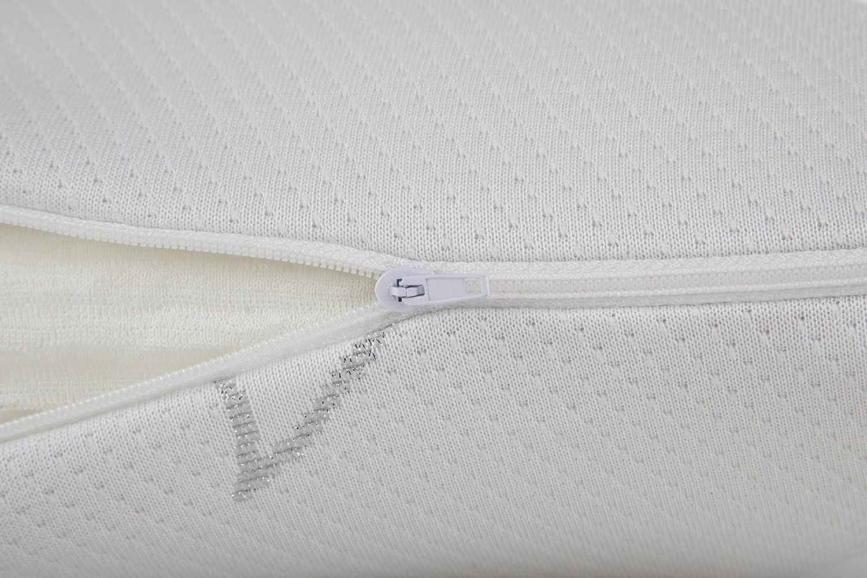 Seasons - Pack de 2 almohadas viscoelásticas, tejido Aloe Vera con hilo de plata, doble funda, 70 cm