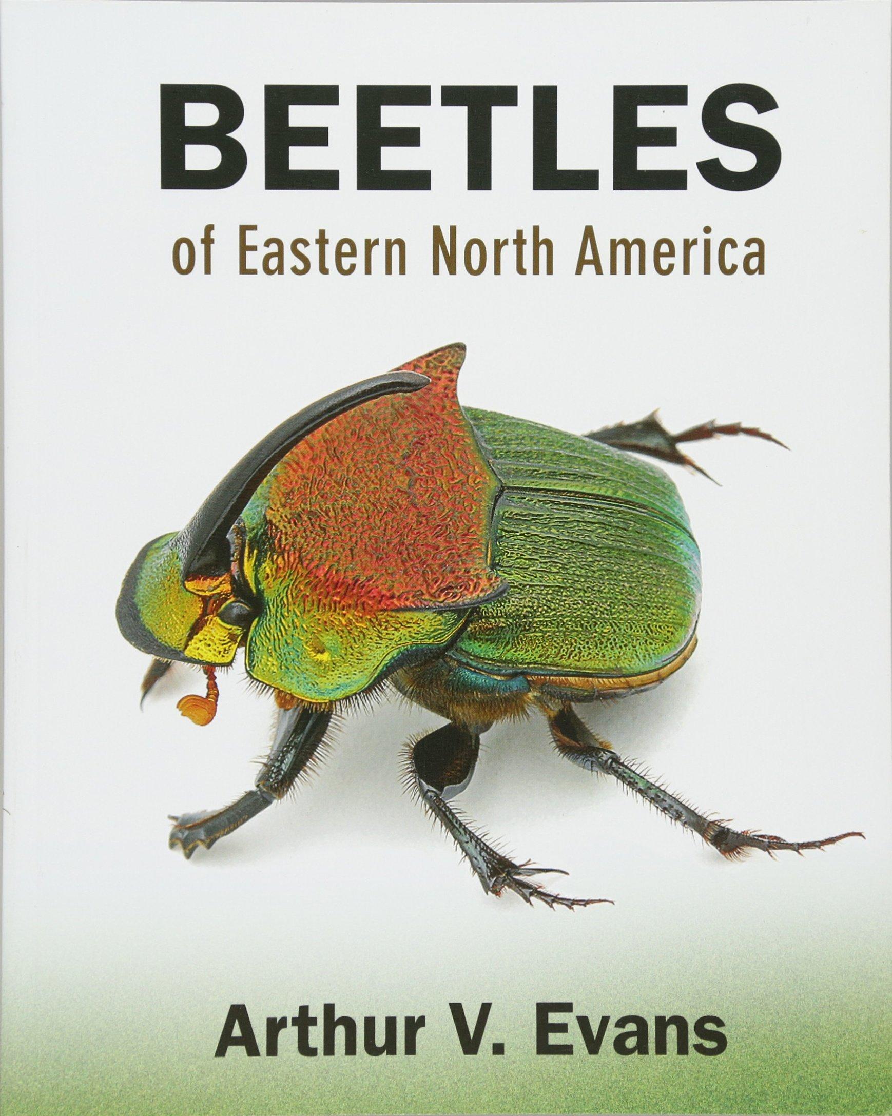 Beetles of Eastern North America: Arthur V. Evans: 9780691133041 ...