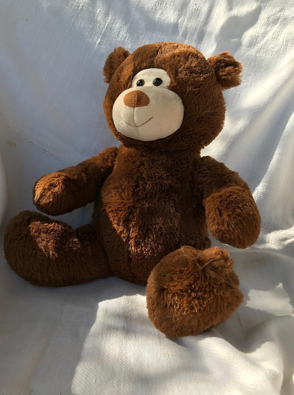 "Amazon.com: Chiropractic Cuddly Soft Teddy Bear ChiroBear, 12"" Brown ..."
