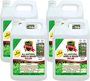 Natural Armor Weed and Grass Killer All-Natural Concentrated Formula. Contains No Glyphosate (1 Case of 4 Gallon Refills)