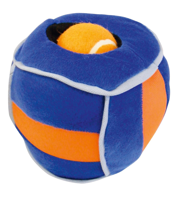 6\ Loopies Hide A Ball 6