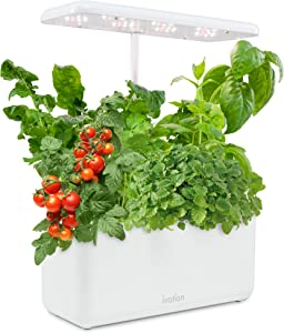 Ivation 7-Pod Indoor Herb Garden Kit, Hydroponic Germination System with Adjustable LED Lamp, Bamboo Planter Baskets, Circulation Pump & Nutrient Powders, Starter Kit for Plants, Vegetables & Fruits