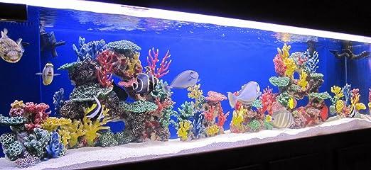 Amazon Com Instant Reef Dm035 Aquarium Decorations Fish Tank