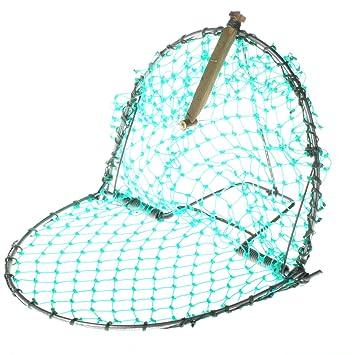 Trampa para cazar aves, 400 mm, 1 unidad: Amazon.es: Bricolaje y ...