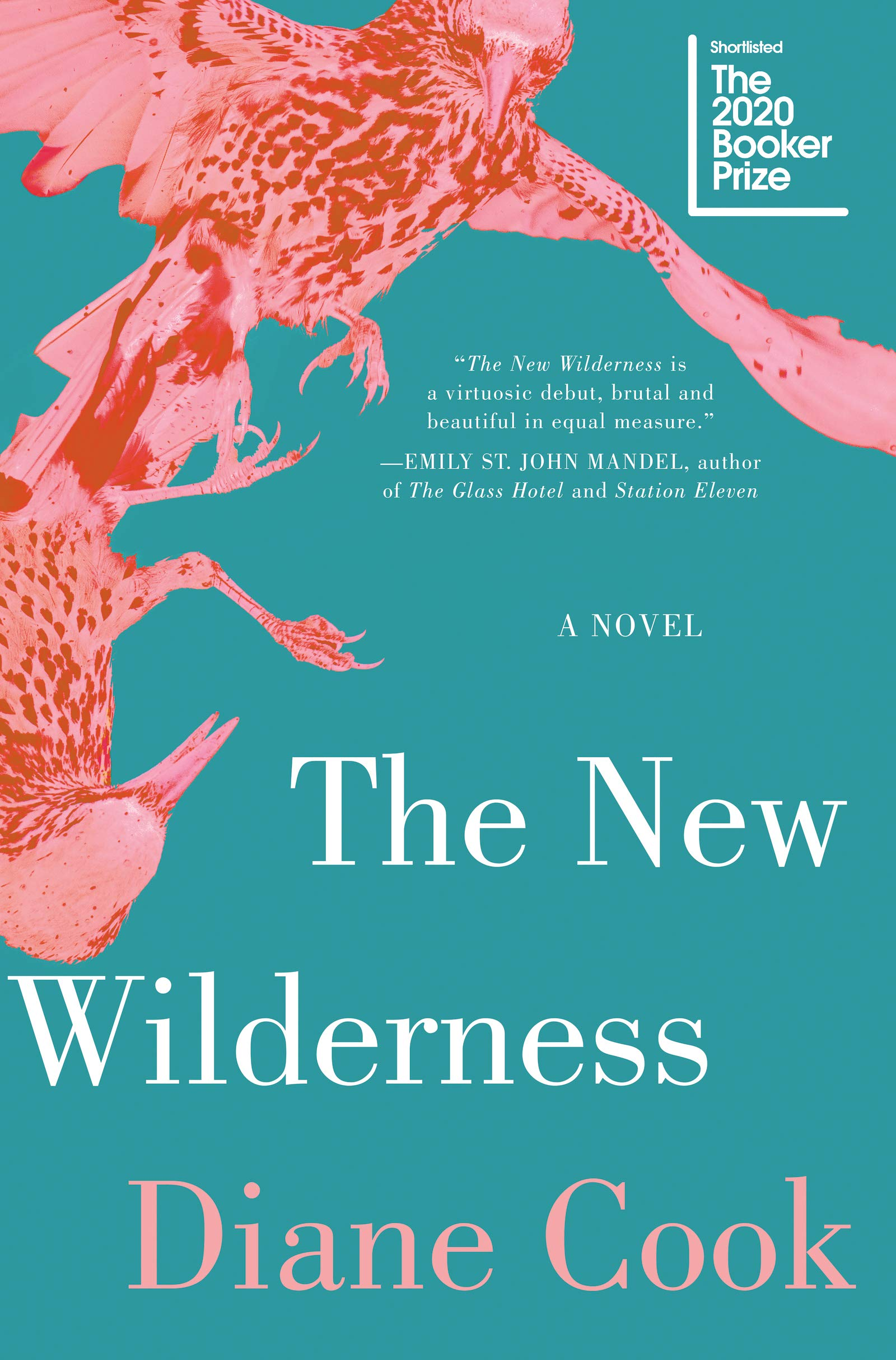 The New Wilderness: Cook, Diane: 9780062333131: Amazon.com: Books