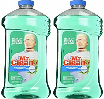 Mr Clean Floor Cleaner Safe For Pets Review Home Co