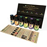USDA Certified Organic Essential Oils Set- 100% Pure Therapeutic Grade Aromatherapy Oils - Ideal For Massage- Natural Beauty Remedies, Premium Quality Peppermint, Sweet Orange, Eucalyptus, Tea tree, Lavender & Lemongrass Oils-, Free E-book Included
