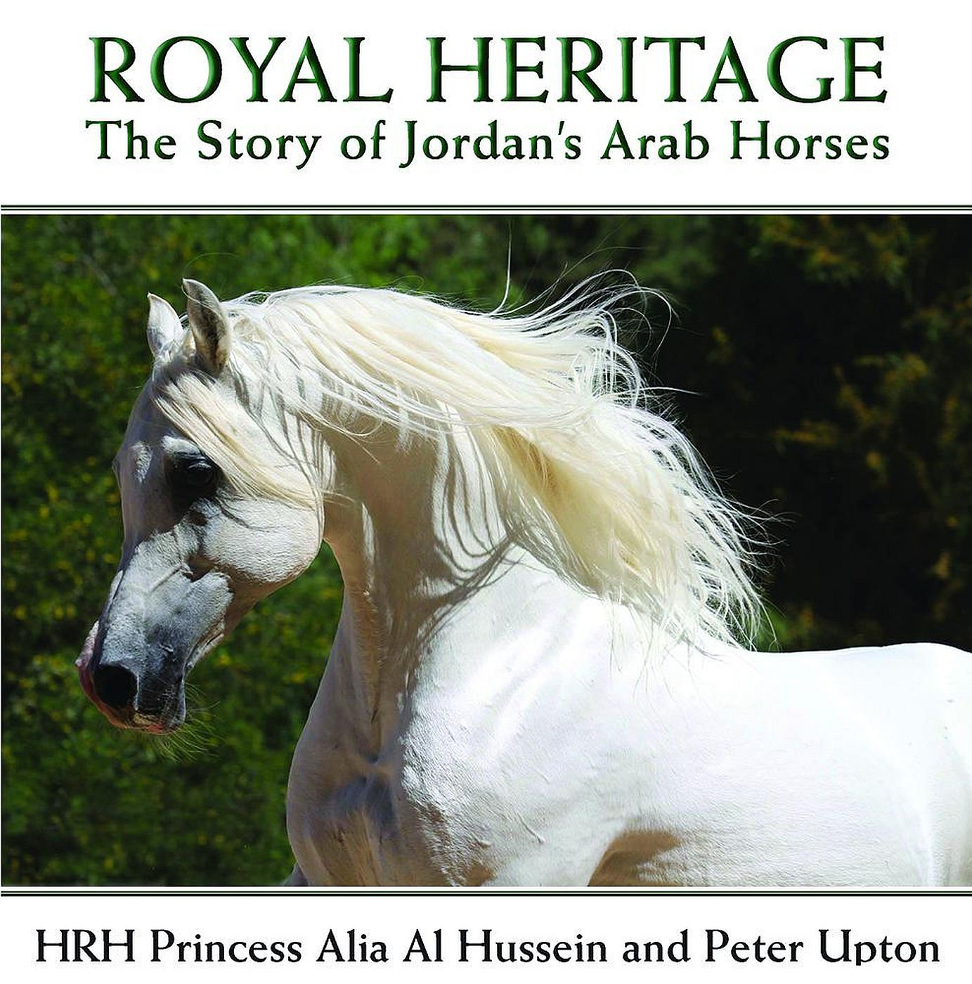 Royal Heritage: The Story of Jordan's Arab Horses